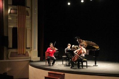 6è Cicle de Concerts Bellpuig Ressona Trio Halíř 2.jpg