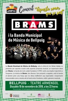 Cartell 7a Fira Conserva't de Bellpuig Concert Brams i Banda Municipal de Bellpuig.jpg