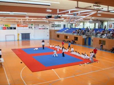 """XXXV """"Trofeu Judo Vila de Bellpuig"""""""